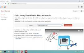 Hướng dẫn cài Google Analytics và Webmastertool cho website tại Zland
